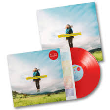 Theory Of Absolutely Nothing (Red Edition) (Vinyl)